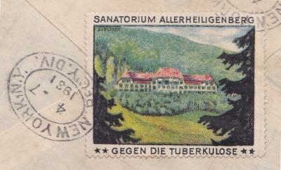 Swiss Local anti Tuberculosis Poster Stamp Christmas Seal